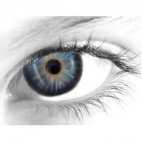 Gelflex Цветные контактные линзы ningaloo 3-х тоновые bay blue Серо-голубые