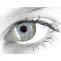 Gelflex Цветные контактные линзы ningaloo gold Элегантность