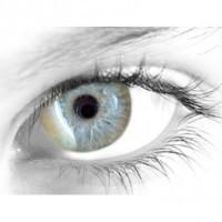 Gelflex Цветные контактные линзы ningaloo gold Принцесса gold