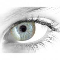 Gelflex Цветные контактные линзы ningaloo gold Мерцание золота