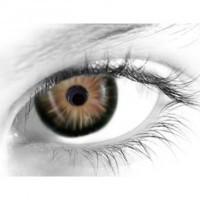Gelflex Цветные контактные линзы ningaloo 3-х тоновые summer hazel Летний орешник