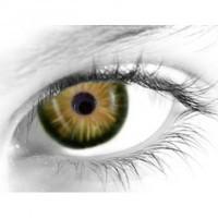 Gelflex Цветные контактные линзы ningaloo 3-х тоновые beach bronze Пляжная бронза